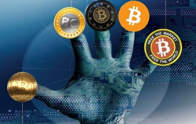 Crypto Invests in Crypto, Study Shows