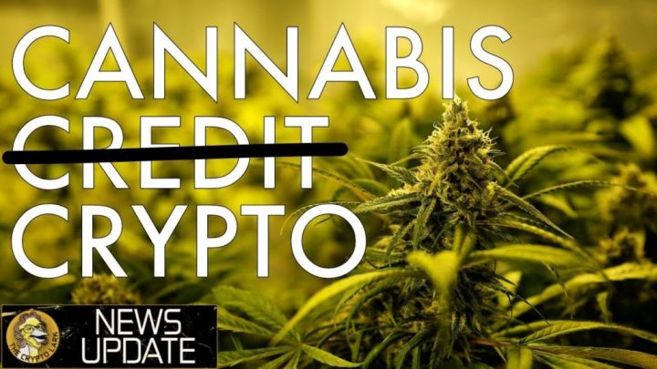 Cannabis Needs Crypto, Restaurants Adopt BTC, Elastos TV, Petro & Yale – Bitcoin News