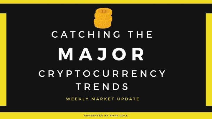 Catching the MAJOR Bitcoin trends!
