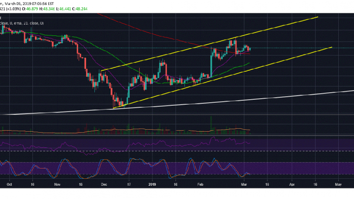 Litecoin (LTC) Holds Steady Above 21 Day EMA, Price Expected To Rally Ahead