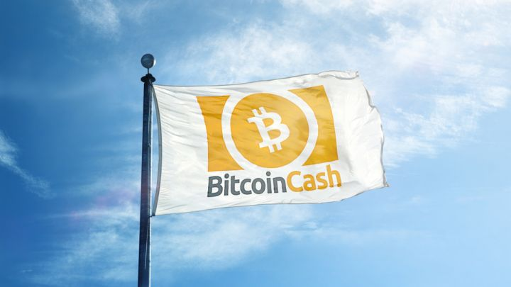 Crypto Bulls Return? Bitcoin Cash (BCH) Doubles in Price in Just 48 Hours