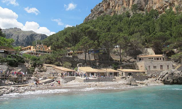 British boy rushed to Majorca hospital with serious head injuries