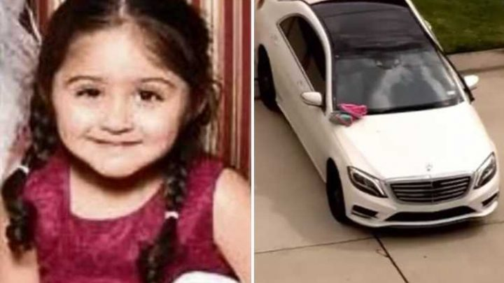 Girl, 3, crushed to death by dad's car after he accidentally knocked it into gear – The Sun