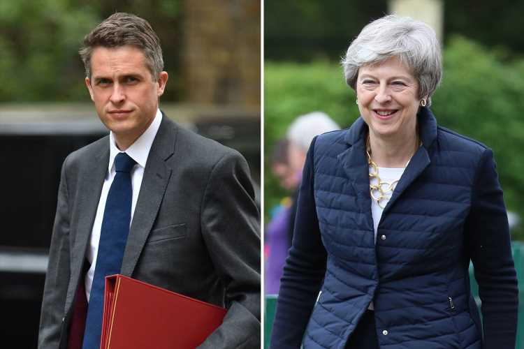 Gavin Williamson slams PM's Brexit talks with Labour as 'grave mistake' with 'fatal' consequences