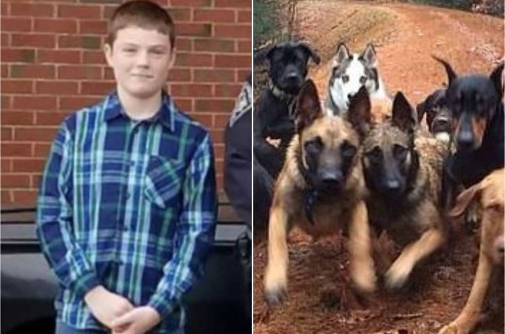 Boy, 14, mauled to death by pack of dogs owned by professional trainer