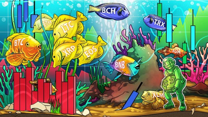 Bitcoin, Ethereum, Ripple, Bitcoin Cash, Litecoin, EOS, Binance Coin, Stellar, Cardano, TRON: Price Analysis May 29