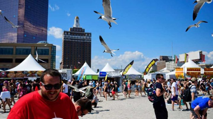Dive-bombing seagulls a threat to kids on Jersey Shore: mayor