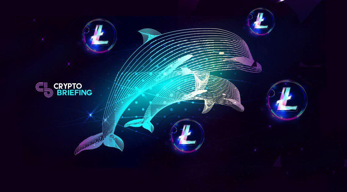 Miami Dolphins Adopt Litecoin As Official Cryptocurrency