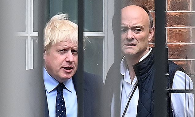 Law-breaking and a Tory body count – is this Boris Johnson's aim?