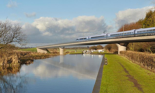 HS2 clearances of woodland stopped while future of project is reviewed