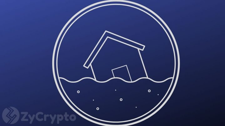 Ripple CEO: In A Crypto Market Flooded With Too Many Coins, XRP Offers Less Volatility And Better Utility ⋆ ZyCrypto