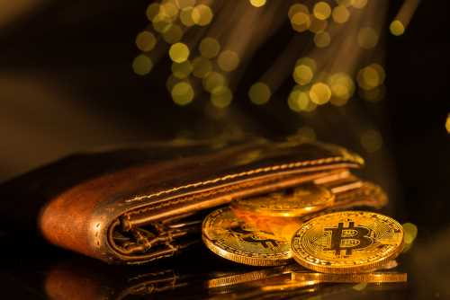 Cryptocurrency vs. E-money Wallets: Which One Is Better?