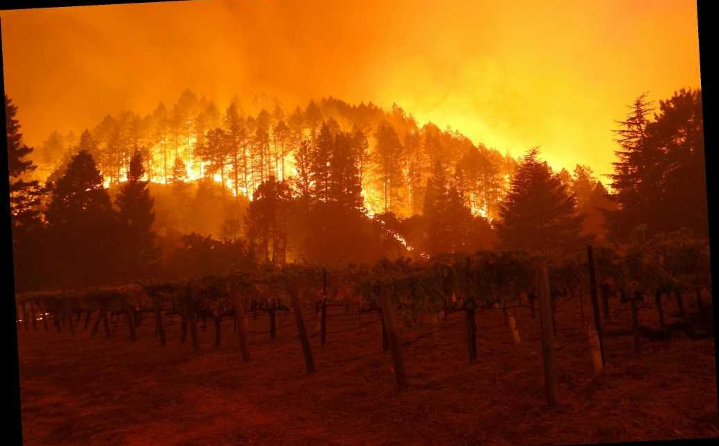 Glass Fire in California burned one acre every five seconds, officials say