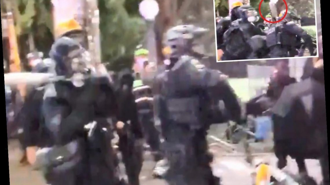 Seattle cop is smashed in back of the head with a BASEBALL BAT as he's surrounded by rioters after falling off his bike