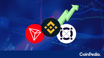 ERD Resumes Uptrend With 47%, TRX Follows At 20% and BNB With 8%