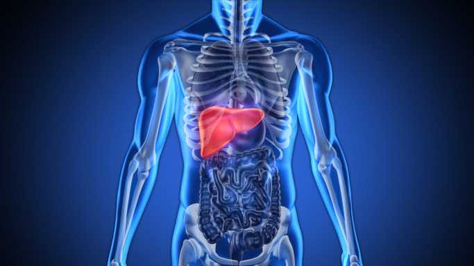 Genfit and Lab Corp Partner Up For NASH Liver Test