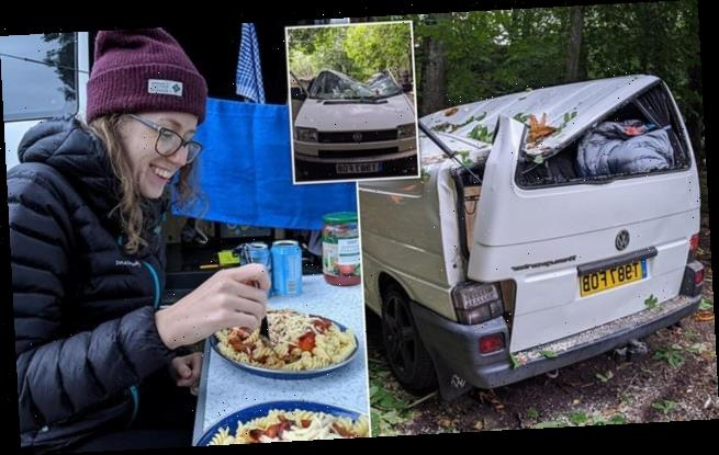 Couple renovate VW camper van – only for a tree to smash through roof