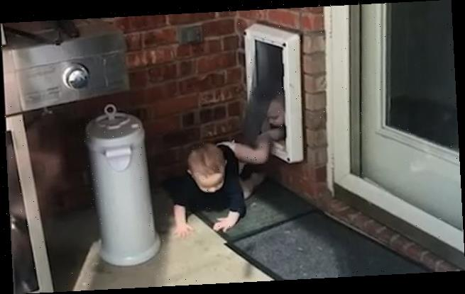 Mother spots her twin baby boys emerging from the dog door