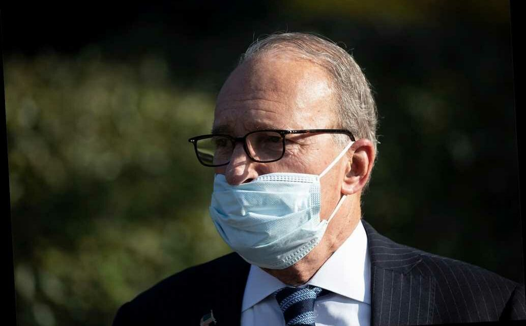 Larry Kudlow rebuffs Biden claim to 'transition from oil industry' in 15 years
