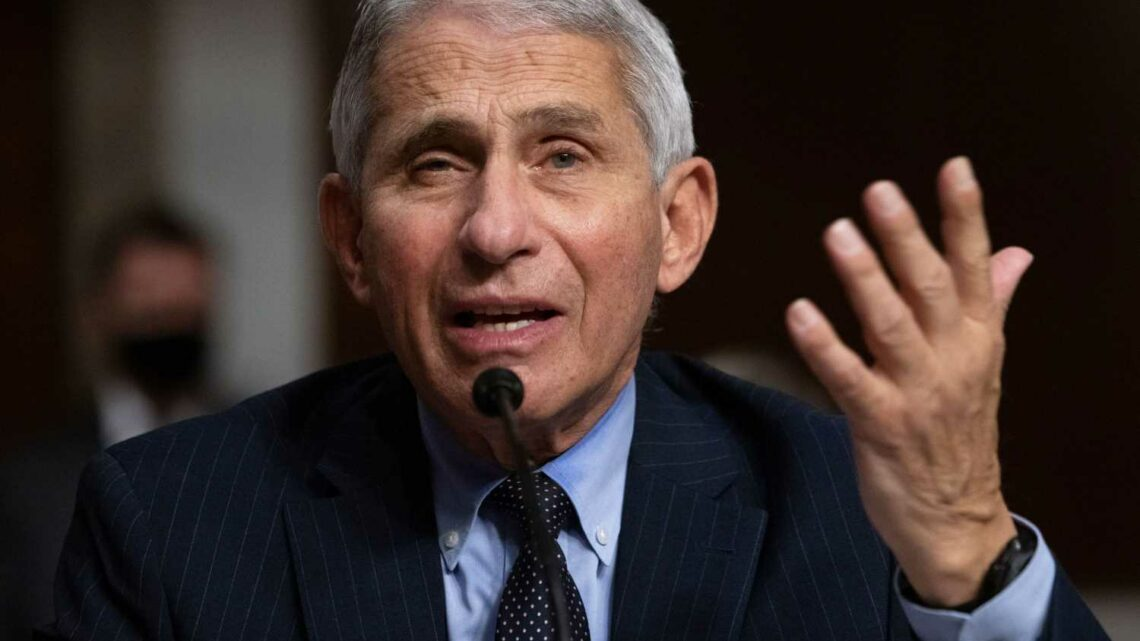Dr. Anthony Fauci says he won't walk away from 'this outbreak no matter who's the president'
