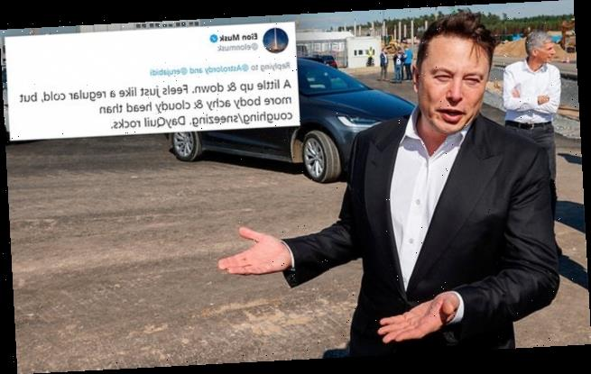 Elon Musk describes his COVID battle saying it feels like regular cold