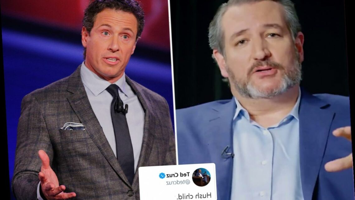 Ted Cruz tells Chris Cuomo to 'hush child' as pair re-ignite nasty Twitter spat over Trump's election challenge