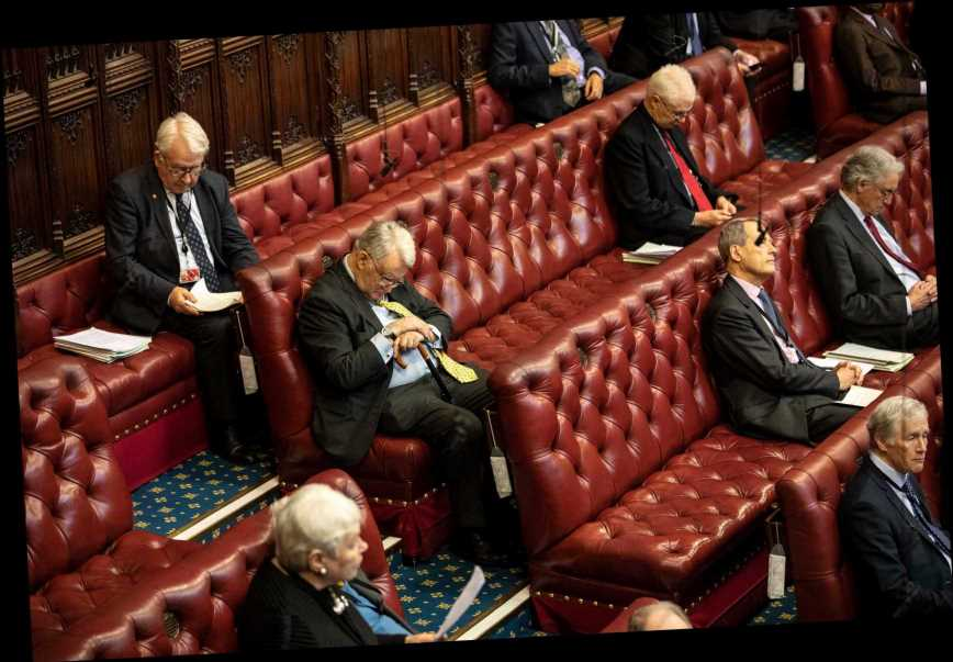 PM on track for Lords Brexit defeat TODAY over controversial markets bill