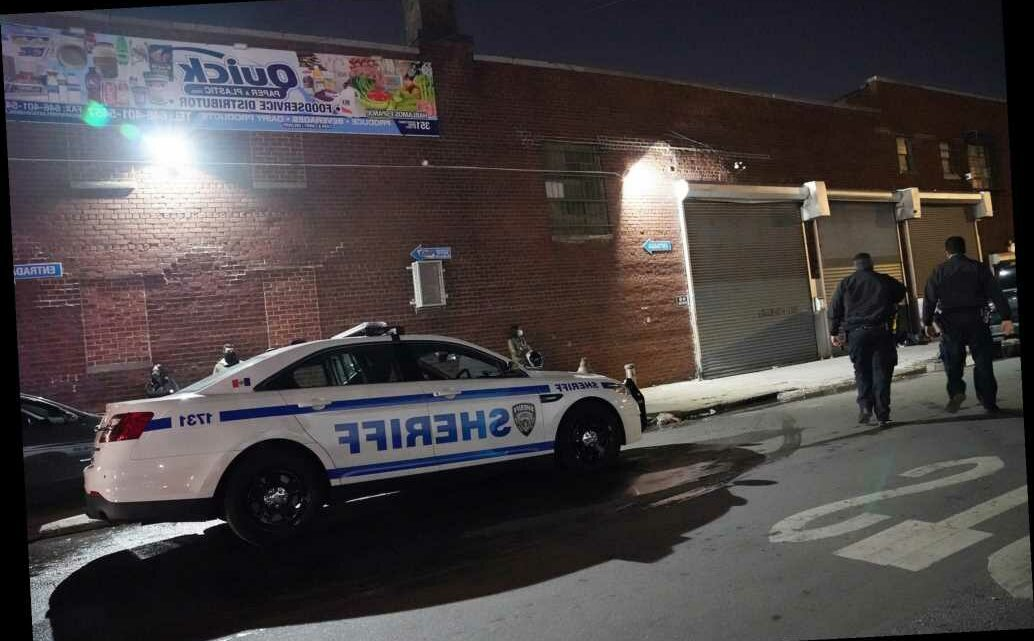 Sheriffs bust up 'Rumble in the Bronx' underground fight club