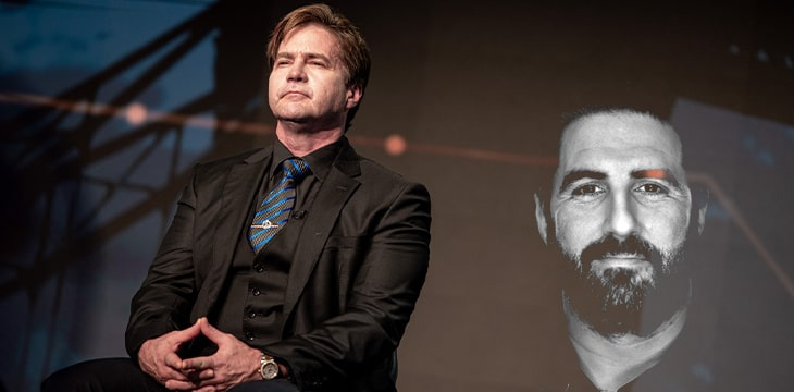 The rule of law, anarchy and self-righteousness: Craig Wright and Peter McCormack