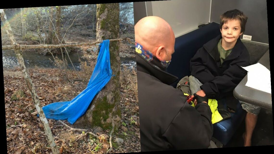 Missing Tennessee boy, 9, found alive after spending 3 days in makeshift shelter in woods