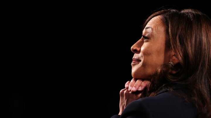 Harris Scoffs at the Idea of a Rematch Against Trump in 2024