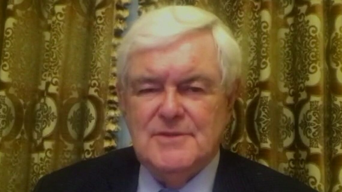 Newt Gingrich on left-wing violence against conservatives: 'This is a real threat to America'