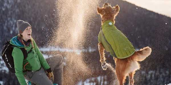The best snow jackets and coats for dogs in 2020