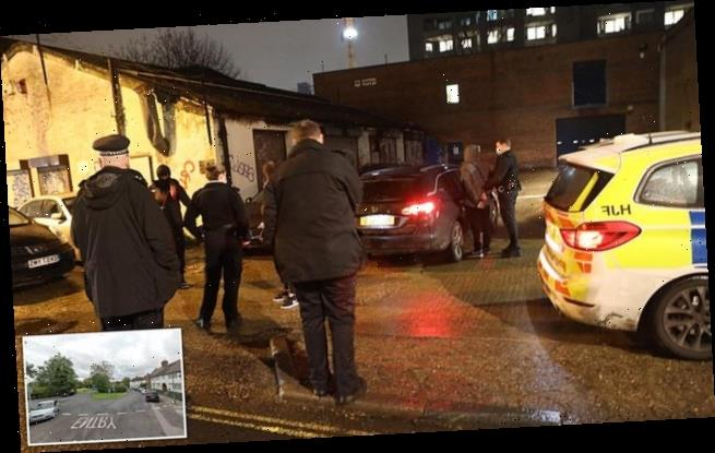 Police raid London bash and smash '100-strong party' in Hertfordshire