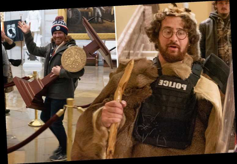 Fur-pelted Capitol rioter is son of NYC judge while grinning trespasser who stole Pelosi's lectern is stay-at-home dad