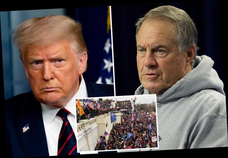 NFL coach Bill Belichick TURNS DOWN Presidential Medal of Freedom from Trump after 'tragic' Capitol riots