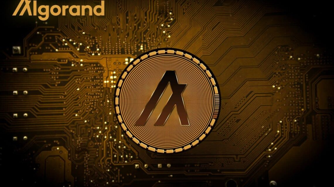 Overviewing the Algorand Hype – Price Analysis & Recent Developments