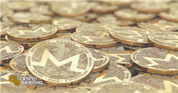 Monero Primed to Surge 20%, Outperforming Privacy Coin Competition