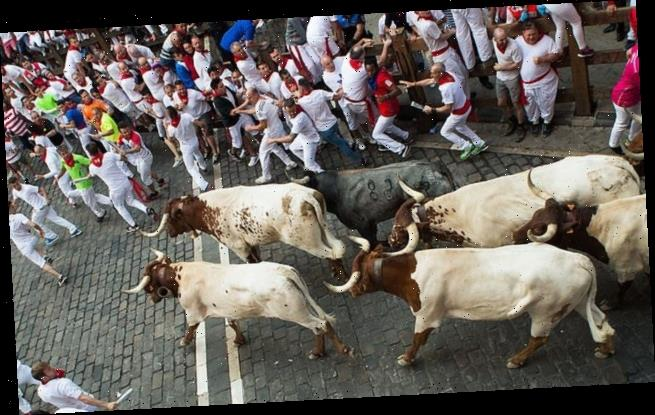 Spain's Pamplona bull run 'will have to be cancelled for second year'