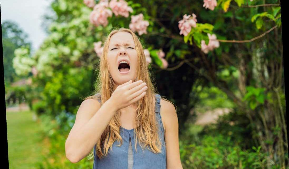 The hayfever season could start THIS MONTH and last three weeks longer
