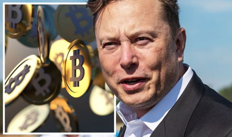 Elon Musk says Bitcoin on brink of mainstream industry acceptance: 'I am a supporter'