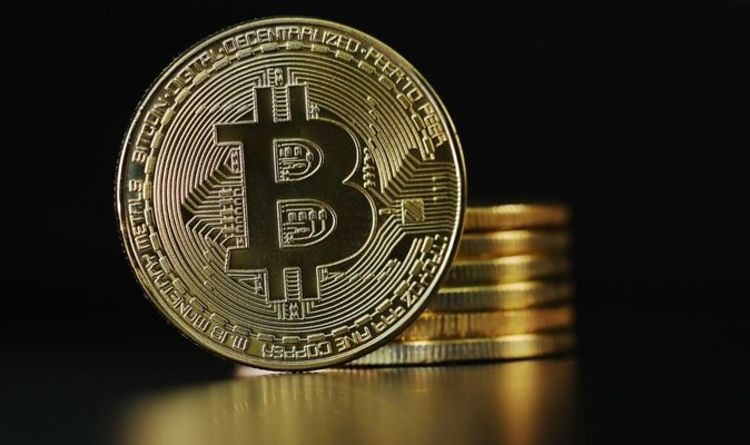 Bitcoin 'in uncharted territory' as investors warned 'price volatility will continue'