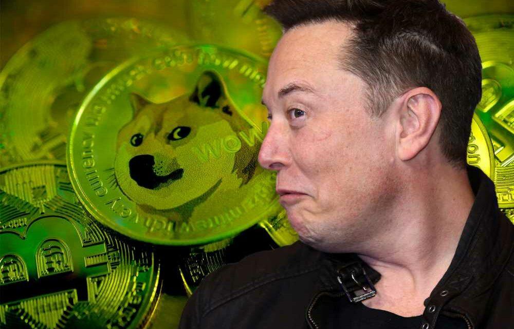 Elon Musk gets back on Twitter, sends Dogecoin soaring