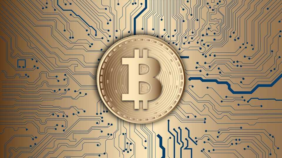 Reasons Behind Bitcoin's Growth