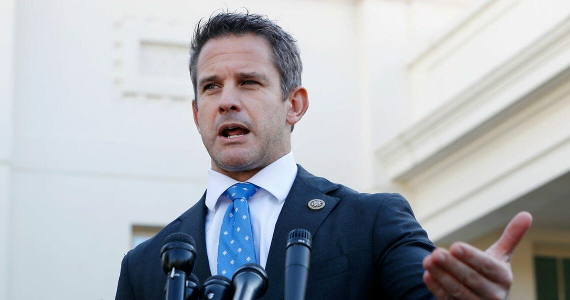 Trump directed an RNC member to tell GOP Rep. Adam Kinzinger a 'vulgar message about what he should do with himself' in 2016, report says