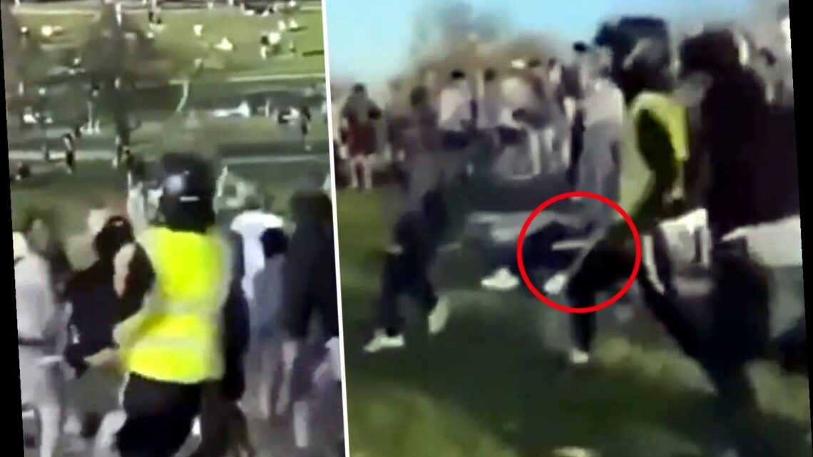 Shocking moment knife fight erupts on packed Primrose Hill in front of horrified sunbathers in north London