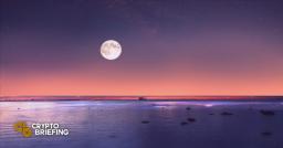 Balancer Is Coming to Polkadot via Moonbeam