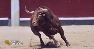 VeChain Technicals Suggest Bull Cycle Has Begun