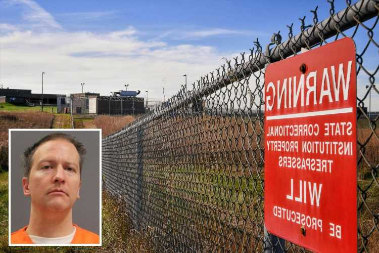 Derek Chauvin looks disheveled in jail jumpsuit as he's put on suicide watch & kept separate over fears he may be killed