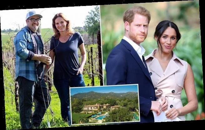 Prince Harry and Meghan are ripe to start winemaking business